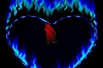 جلب وتوليع قلب الحبيب-الشيخة الروحانية أم يوسف0096171137681