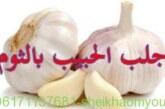 أصدق شيخة روحانية في الوطن العربي أم يوسف0096171137681-جلب الحبيب بالثوم